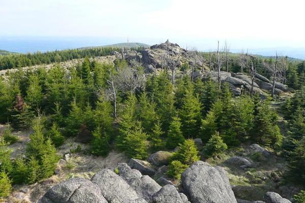 Příroda a památky východního Krušnohoří